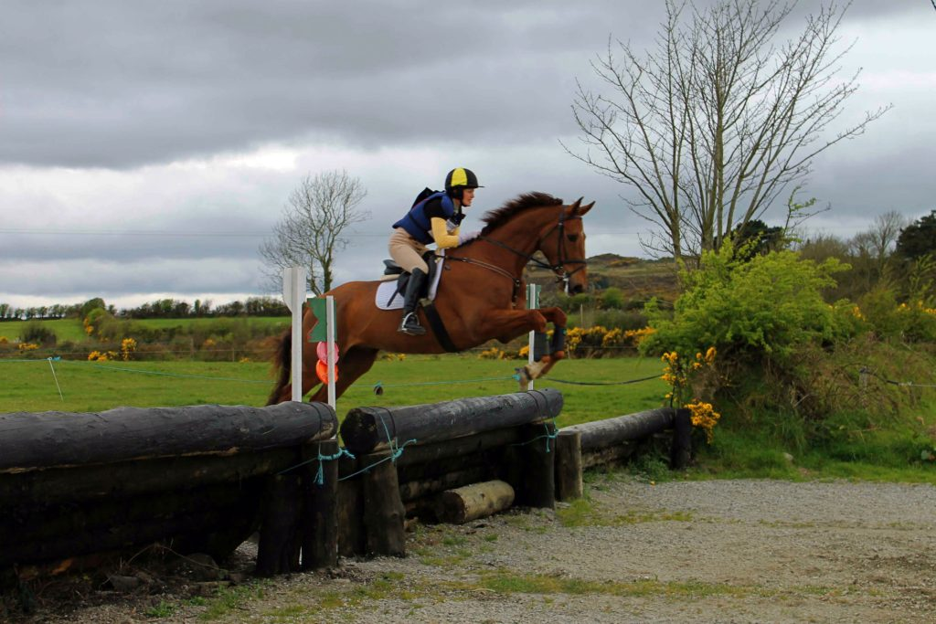 X-country - working with horses in Ireland