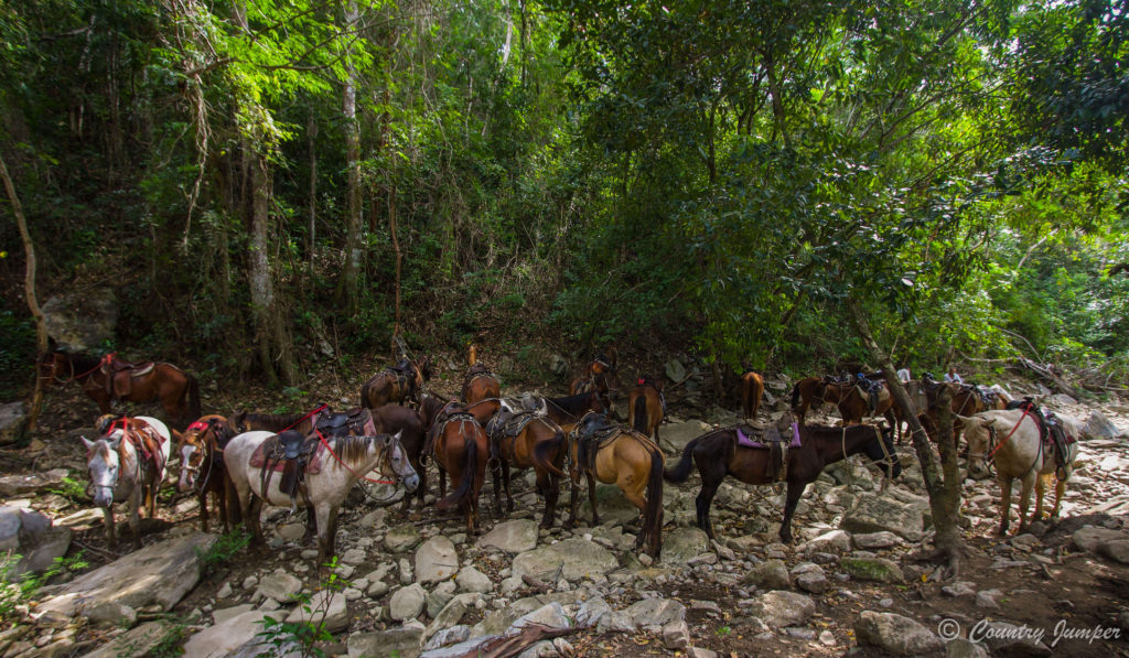Horseback riding in Trinidad