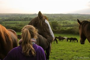 blonde woman with ponytail in scarf and purple jacket standing in a field with horses in the mountains of Ireland