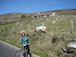 girl in green shirt and pigtails riding a bicycle in Ireland in front of sheep on a hill