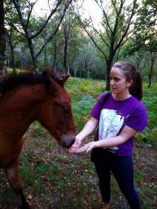 woman in purple shirt holding hands under nose of wild filly in the mountains of Galicia Spain