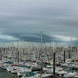 lots of boat masts in harbor against gray sky